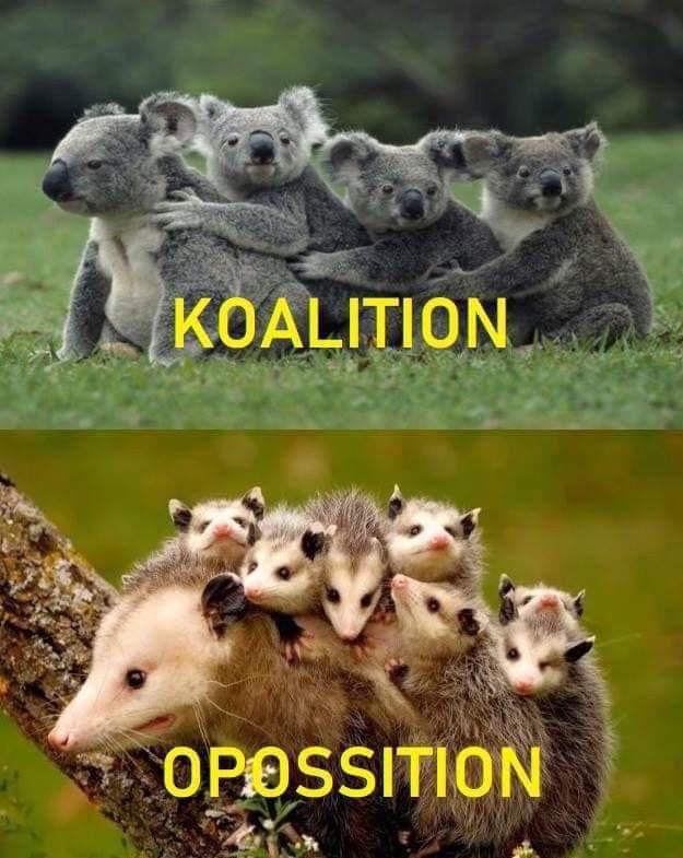 koalition-opossition.jpg