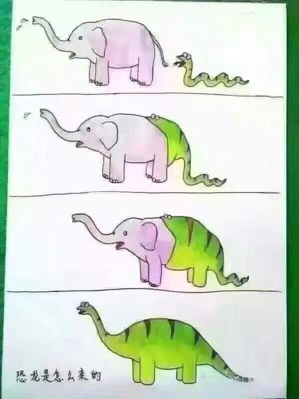 snake swallows elephant.jpg