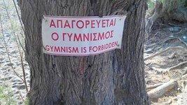 gymnism.jpg